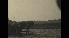 Vintage 16mm film, 1936, Florida, loading hay mechanical Stock Footage