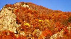 Carpathian Mountains in the autumn. Pan tilt down valley. Stock Footage
