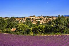 Valensole village and lavender. Provence, France - stock photo