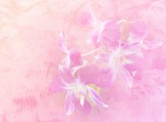 Stock Illustration of Abstract orchid flower on concrete wall textured background