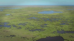 Wetlands Mississippi Delta Aerial Flyby Stock Footage