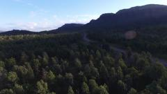 Aerial footage of Native Pine Forest Stock Footage