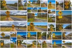 Australian road signs - stock photo
