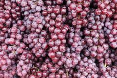 close up of red grape - stock photo