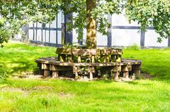 Circle wooden bench - stock photo