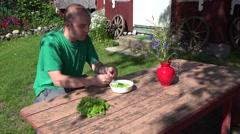 Gardener man guy husk hull and eat fresh peas. 4K Stock Footage