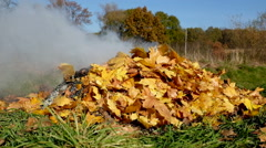 Burning autumn maple leaves in fireplace, visible smoke, rural landscape. Arkistovideo