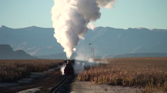 Steam freight train approaches camera Arkistovideo