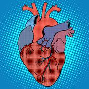 Anatomy human heart retro style Stock Illustration