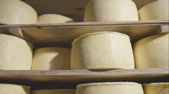 Freshly made wheels of cheese in a maturing cellar Stock Footage