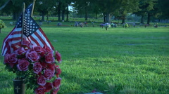 American Flag On Grave Site Stock Footage
