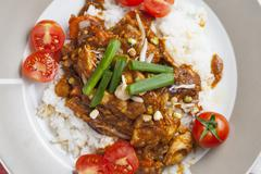 Szechuan chicken with white rice on a plate - stock photo