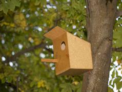 Bird-house on a tree Kuvituskuvat