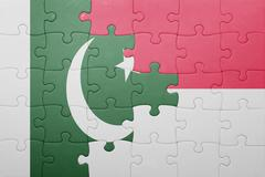 puzzle with the national flag of indonesia and pakistan - stock photo