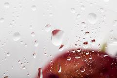 Drops on the cellophane on flowers Stock Photos