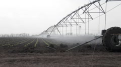 Sprayer sprays water on field with young cabbage Stock Footage