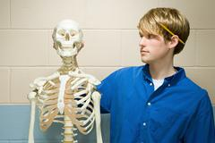 Male student stood with a human skeleton - stock photo