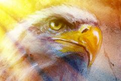 painting of eagle on an abstract background, color with spot structures and - stock illustration