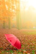 Stock Photo of Red umbrella in autumn park on leaves carpet.