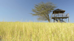 Hut in African Grass shot in moving hand held footage low angle Stock Footage