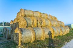 Bale of straw in autumn Stock Photos