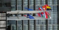 Stock Video Footage of Vertical footage of all European Union Flags