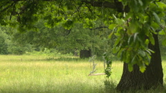 Forest after the rain Romantic teeter-totter - stock footage