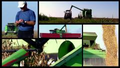 Split screen of soybean harvest. Slow motion video. High speed camera. Stock Footage