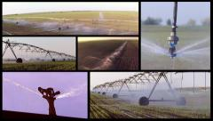 Split screen of field irrigation. - stock footage