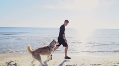 male runner and his husky dog jogging on the beach slow motion - stock footage