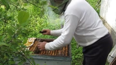 Work in the apiary beekeeper - stock footage