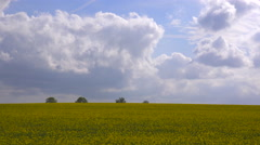 A beautiful time lapse of clouds over yellow fields in England. Stock Footage
