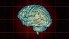 A human brain rotates on a grid background - Brain 1008 HD, 4K Stock Footage