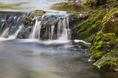 Stock Photo of Little waterfall in a mountain river in the High Fens, Ardennes, Belgium, lon