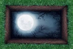 Moon in the ground Stock Illustration