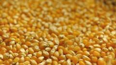 Corn grains pour. Stock Footage