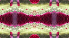 Kaleidoscope Abstract 1 Stock Footage