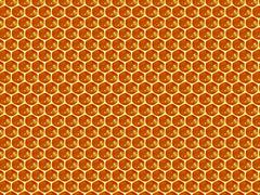 Close up view of the working bees on honey cells - stock illustration
