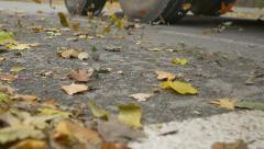 Wind Leaves On Street Stock Footage