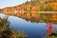 Fall Colors Reflected in Calm Lake with Foreground Bushes - stock photo