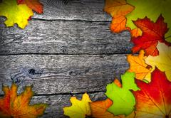 Frame of colorful autumn leaves Stock Photos