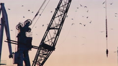 Static silhouetted harbor crane during golden hour Stock Footage