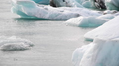 Icebergs floating over sea Stock Footage