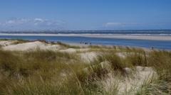 Island Langeoog, dune and beach Stock Footage