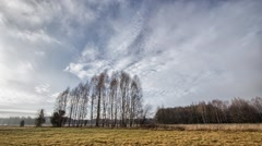 Country landscape in eastern Europe in full HD. Stock Footage
