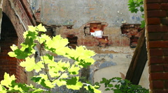 courtyard of an old building, large Windows, on a background of green plants - stock footage