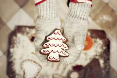 Child's hands in gloves holding gingerbread cookie - stock photo
