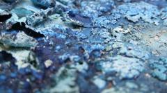 Alien organic matter landscape blue Stock Footage