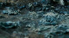 Alien organic matter landscape Stock Footage