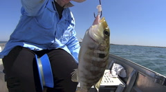 Fish Landed On Handline In Dinghy Stock Footage